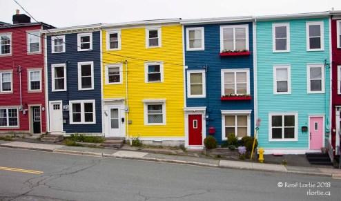 Maisons colorées de St-John's