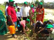 RSS Tree plantation (4)