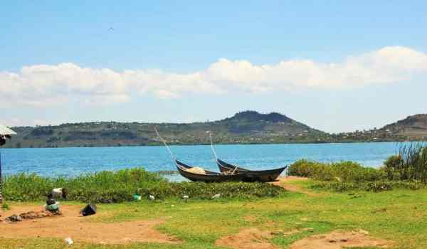 Massive fish deaths reported on Lake Victoria 2021
