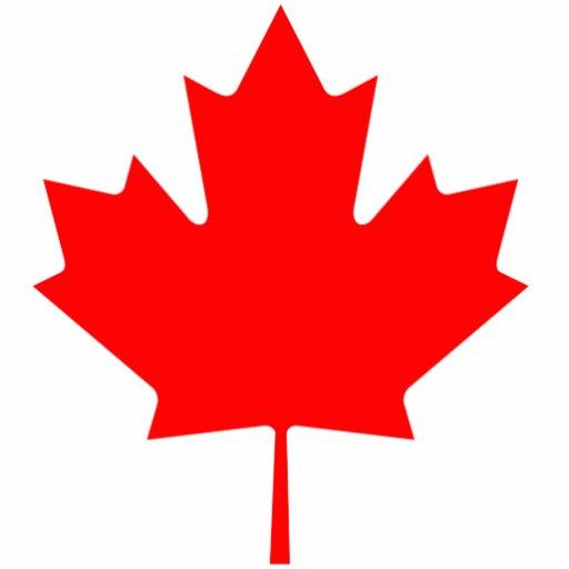 Fall Of The Leafe Wallpaper Canada Maple Leaf Photo Cutout Zazzle
