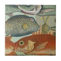 Fish Tiles, Fish Ceramic Tiles