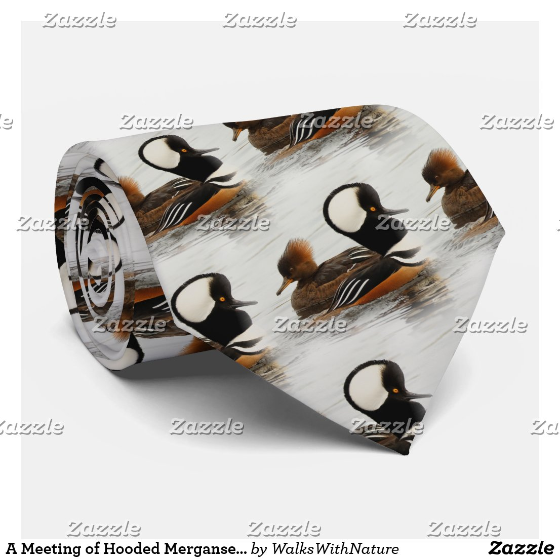 A Meeting of Hooded Mergansers Tie