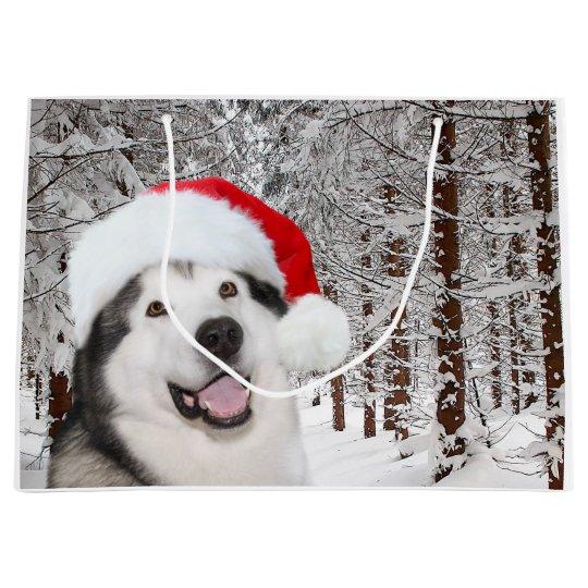 Alaskan Malamute Christmas Cards Zazzle UK