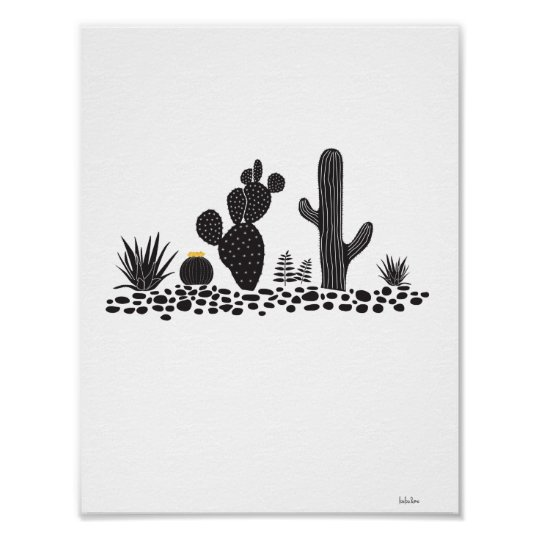 black white cactus and