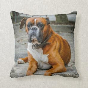 Boxer / Dog Photo Decorator Pillow