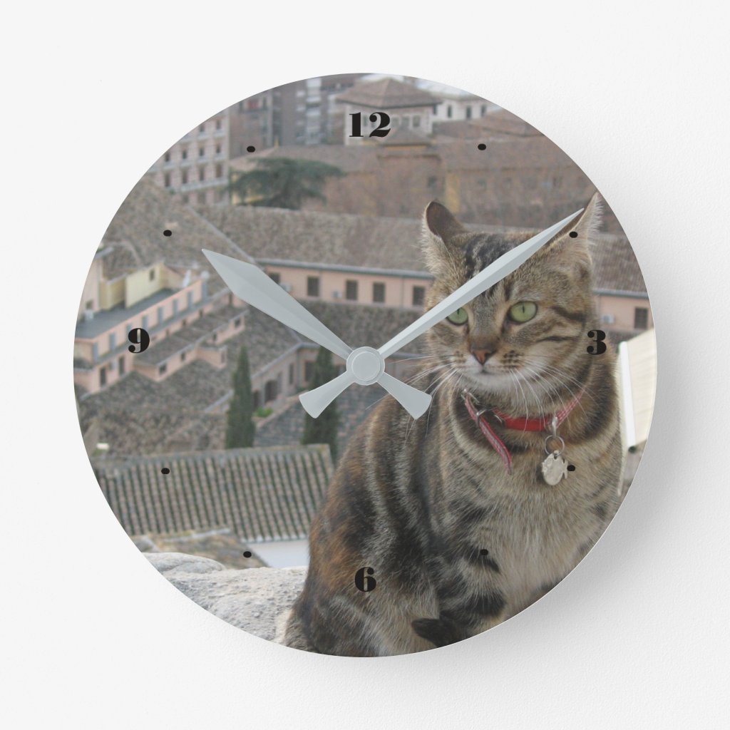 Cat Round Wall Clock