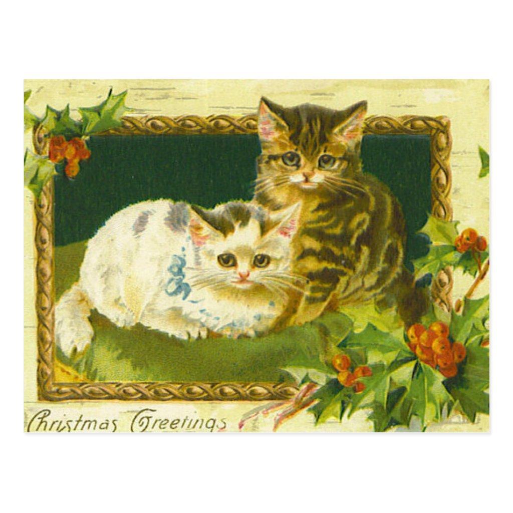 Christmas Kittens Vintage Postcard