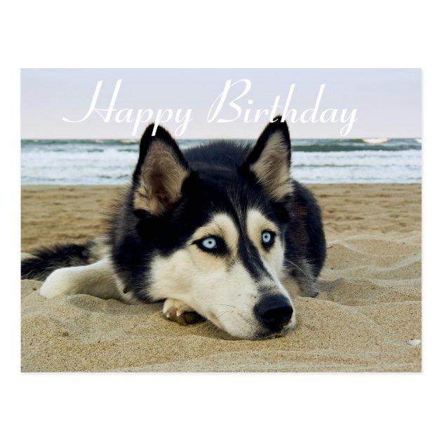 Happy Birthday Siberian Husky Puppy Dog Post Card Zazzle