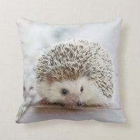 Hedgehog Pillow | Zazzle