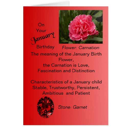 January Birthday Card Carnation And Garnet Zazzle