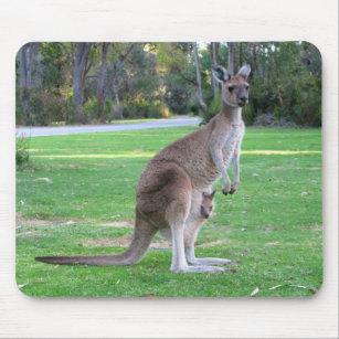 baby kangaroo mouse mats