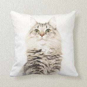 Norwegian Forest Cat Cushion