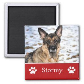 Personalised Pet Photo Magnet