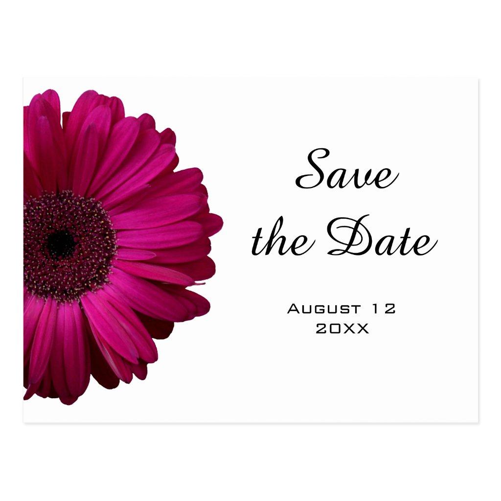 Pink Gerbera Daisy Save the Date Postcard