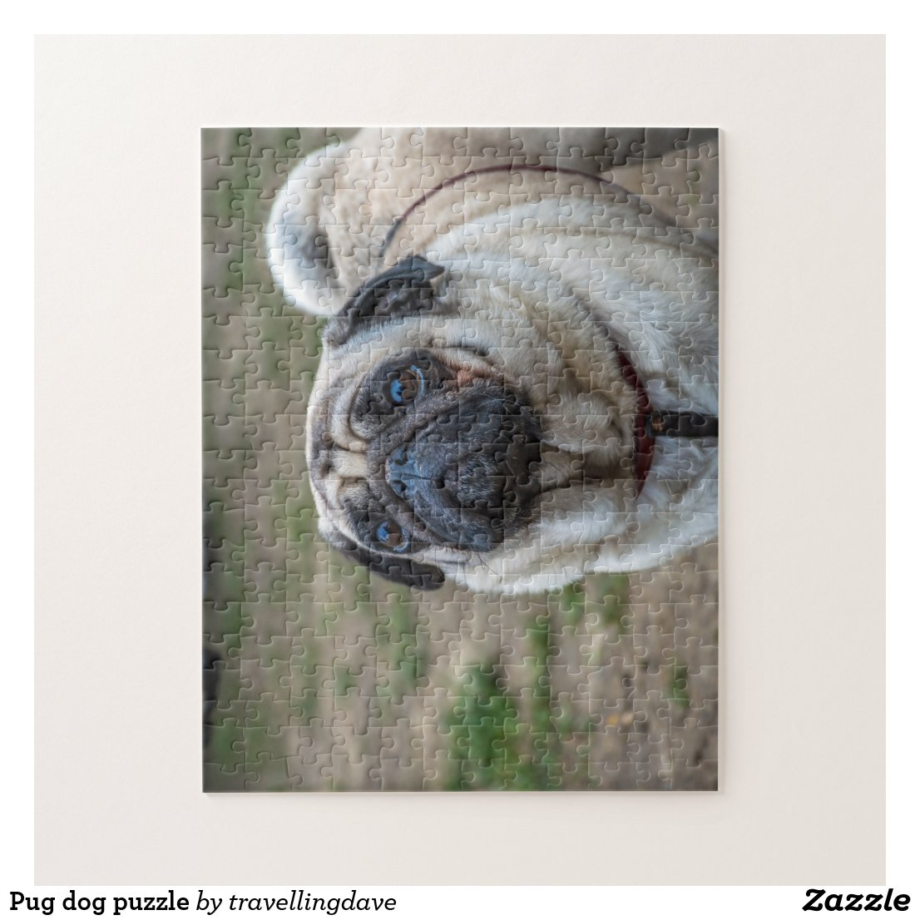 Pug photo puzzle