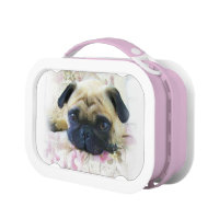 Pug lunch box