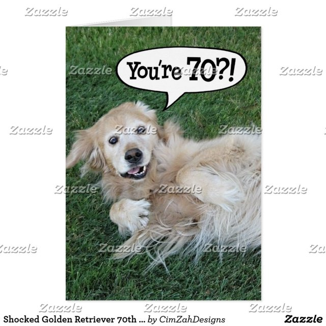 Shocked Golden Retriever 70th Birthday Card