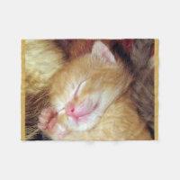Sleeping Cat Fleece Blanket