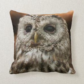 Twany Owl Cushion