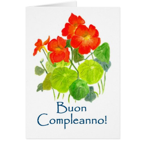 Nasturtiums Birthday Card Italian Greeting Zazzle