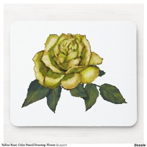 yellow rose drawing pencil flower colour mouse