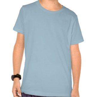 Acme Sub-Space Harmonica (Calls UFOs) shirt