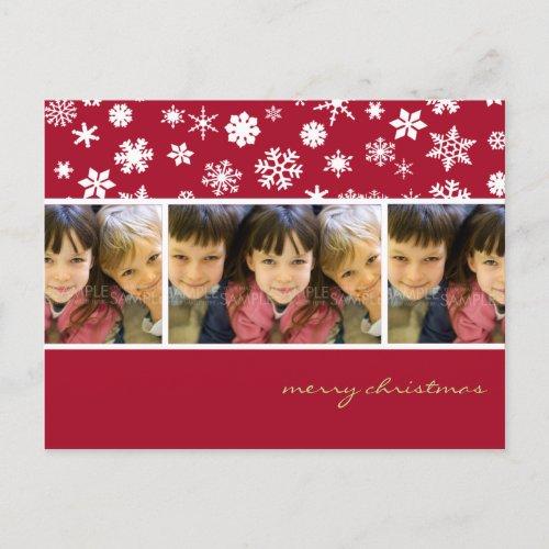 Amaryllis Snowflakes :: Christmas Photo Postcard postcard