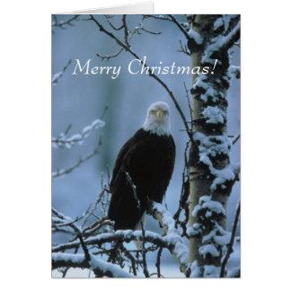 Bald Eagle Christmas Cards Greeting Amp Photo Cards Zazzle