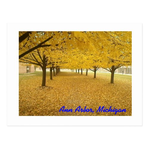 Ann Arbor in Fall Postcard