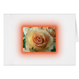 Apricot Rose Blur Cards