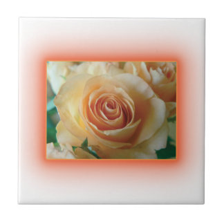 Apricot Rose Blur Ceramic Tiles