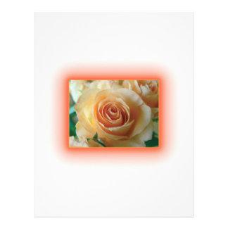 Apricot Rose Blur Custom Letterhead