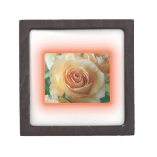 Apricot Rose Blur Premium Keepsake Boxes
