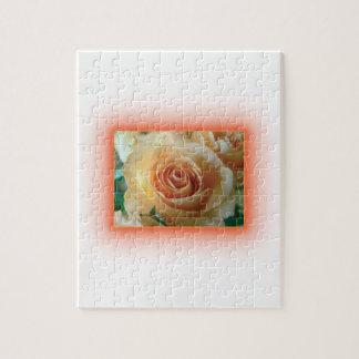 Apricot Rose Blur Puzzle