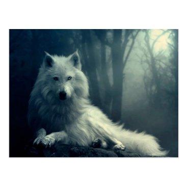 Arctic wolf - forest wolf - snow wolf - white wolf postcard