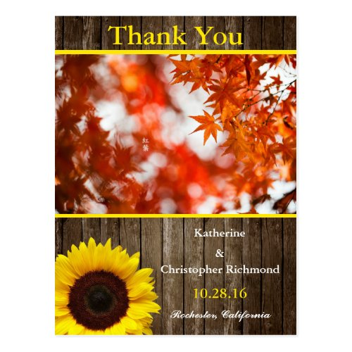 Autumn foliage/sunflower theme postcard