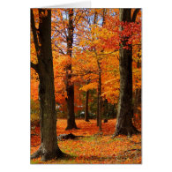 Autumn Greetings Card