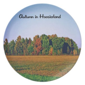 Autumn in Indiana Party Plates