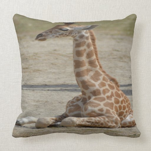 Baby Giraffe Throw Pillow  Zazzle