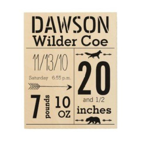 Baby Record Keepsake Arrow Bear Fox Embellishments Wood Canvases