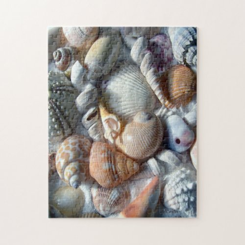 Beach Shells Tan and White Puzzle