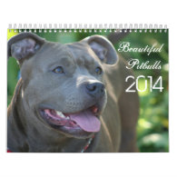Beautiful Pitbulls 2014 Dog Calendar