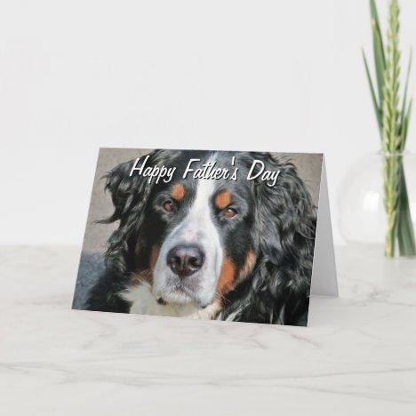 Bernese Mountain Dog Photo Image Happy Father's Da Card