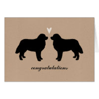 Bernese Mountain Dogs Wedding Congratulations Card