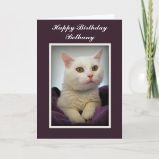 Bethany Happy Birthday White Cat Card