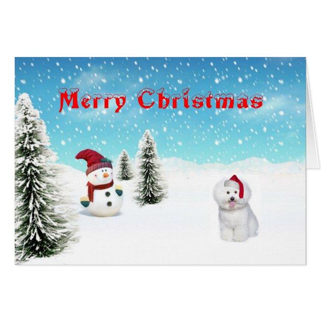 Bichon Frise Christmas Card Zazzle