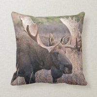 Big Bull Moose Throw Pillow | Zazzle