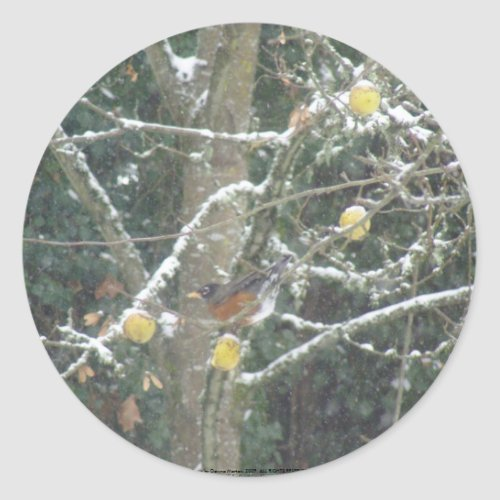 bird in a winter tree sticker