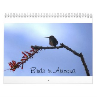 Birds in Arizona calendar