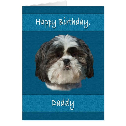 Birthday Daddy Shih Tzu Dog Card Zazzle